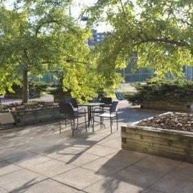 WEC terrace_3198